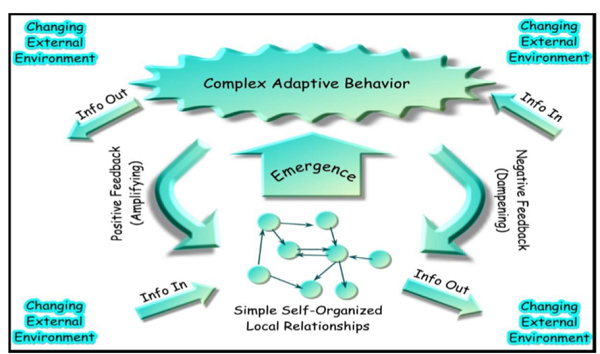 Complex Adaptive System Model