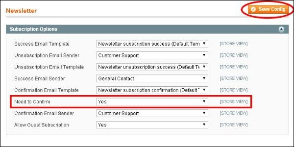 Magento Setup Newsletter - Newsletter subscription email template
