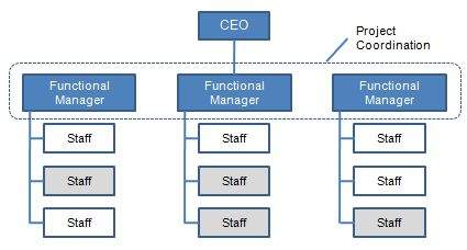 organizational structuresfunctional structure