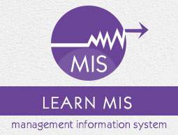 Write a note in management information systems and their implementation