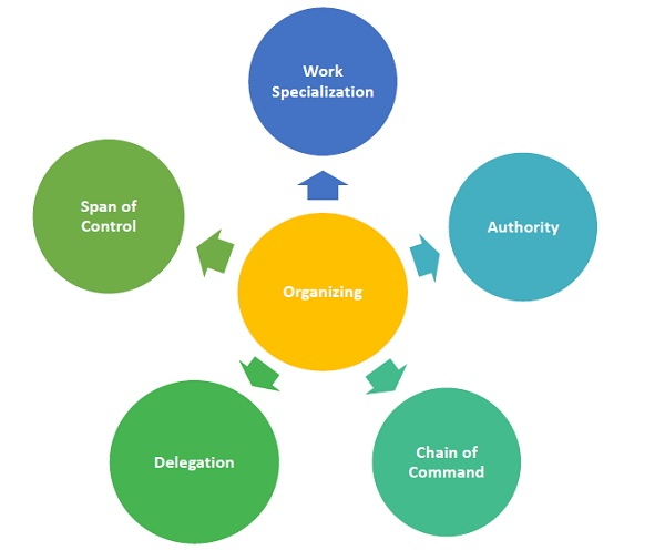 Management Principles Of Organizing