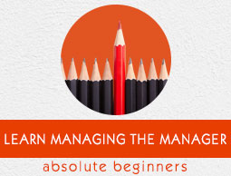 Managing the Manager Tutorial