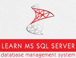 MS SQL Server - Integration Services