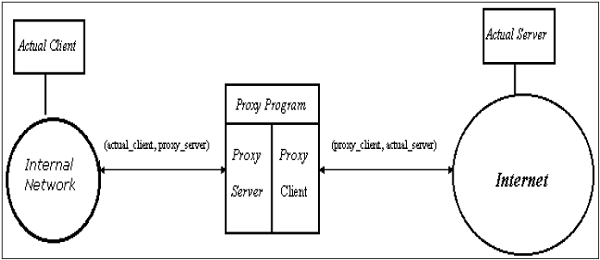 Application-specific Proxies