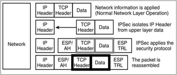 Network Security – Network Layer - Tutorialspoint