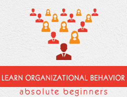 Organizational Behavior Tutorial
