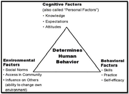 organizational behavior learning social learning theory