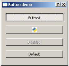 QPushButton Widget Output