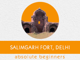 Salimgarh Fort Tutorial