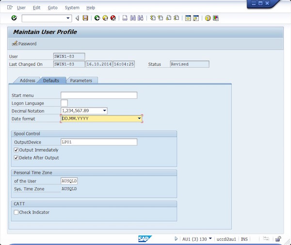 Sap End User Customization