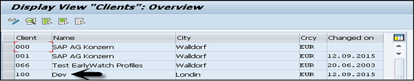 Display VIew Clients