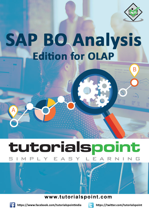 SAP BO Analysis Edition For OLAP Tutorial