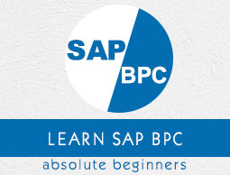 SAP BPC Tutorial
