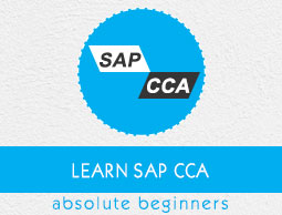 SAP CCA Tutorial
