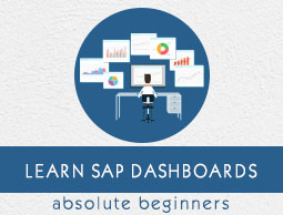 SAP Dashboards Tutorial