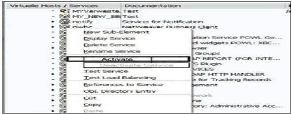 Activate ICF Service