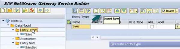 Entity Type Options