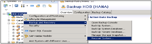 Recover of Hana System