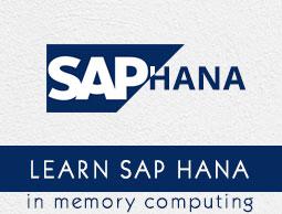 SAP HANA - Data Types