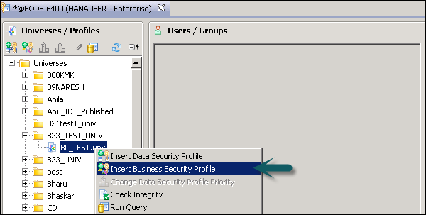 Insert Business Security Profile