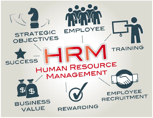 Organizational and HRM Strategy