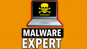 Malware Analysis Expert - Analyzing Malwares from the core Image