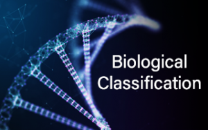 Class 11th Biological Classification Image