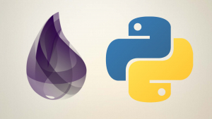 Python and Elixir Programming Bundle Course Image
