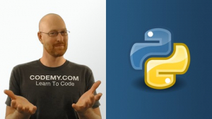 Python Programming For Everyone Image