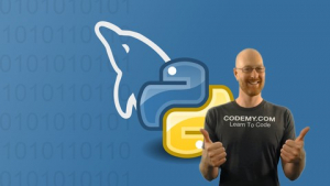 Using MySQL Databases With Python Image