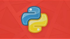 Python Programming : Learn Python with 100+ Practicals Image
