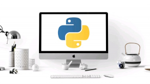 Python For Absolute Beginners   Image