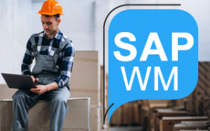 SAP WM Online Training Image