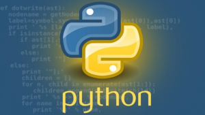 Python Programming from scratch with practicals  Image