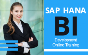 SAP HANA BI Development Online Training Image