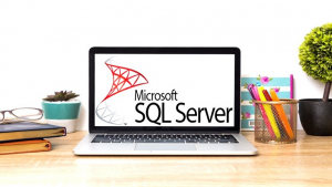 Complete Microsoft SQL Server from Scratch: Bootcamp Image