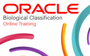 Oracle GoldenGate Online Training Image