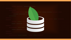Mongo DB : All About MongoDB Image