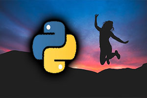 Learn Python 3.8 From Scratch With Examples and Demos Image