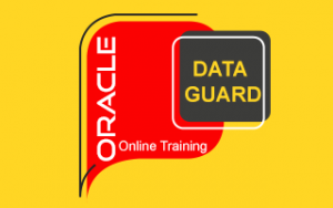 Oracle Data Guard Online Training Image