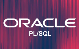 Oracle PL/SQL Online Training Image
