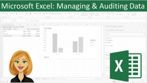 Microsoft Excel: Managing and Auditing Data Image