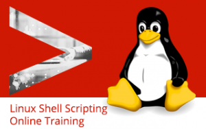 Linux Shell Scripting Online Training Image