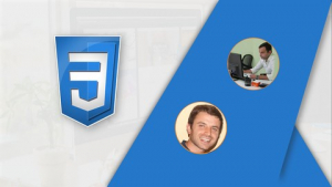 CSS Bootcamp - Master CSS (Including CSS Grid / Flexbox) Image