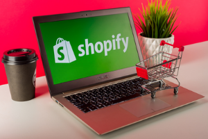 The Complete Shopify Making Money Selling E-books Course Image