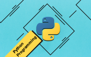 Learn Python Programming in 100 Easy Steps Image