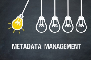 Metadata Management Fundamentals Image
