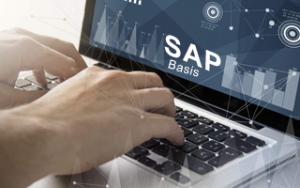 SAP Basis Online Training Image