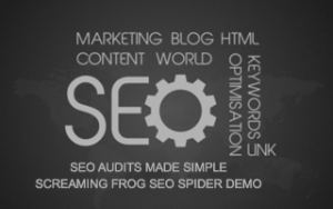 SEO Audits Made Simple + Screaming Frog SEO Spider DEMO Image