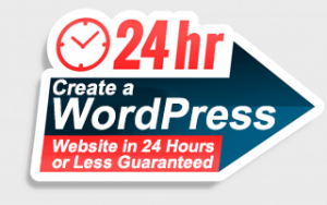 Create a WordPress Website in 24 Hours or Less Guaranteed Image
